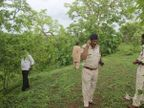 प्रेमी युगलांना लुटून करायचे Gangrape, 2 वर्षांत 45 मुलींवर अत्याचार देश,National - Divya Marathi