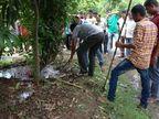 PHOTOS: अंगणात नागिनसह निघाले 19 साप, लोकांचा उडाला थरकाप|देश,National - Divya Marathi
