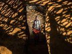 अमेरिकी फोटोग्राफरने केन्यामध्ये क्लिक केले वाइल्डलाइफचे असे PHOTOS| - Divya Marathi