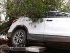 PHOTOS: एक कार घुसली पाणीपुरीच्या दुकानात तर दुसरी चढली हातगाडीवर देश,National - Divya Marathi