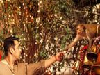 सलमानच्या \'बजरंगी भाईजान\'ला पाकिस्तान सेन्सॉर बोर्डाने लावली कात्री| - Divya Marathi