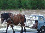 FUNNY: जेव्हा कार हासायला लागते, पाहा हौशी लोकांचा \'कार\'भार तुम्हीही व्हाल गप्पगार| - Divya Marathi