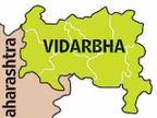 विदर्भ सक्षम, महाराष्ट्र हे तर नापासांचे राज्य, ज्येष्ठ अधिवक्ते श्रीहरी अणे यांचे मत नागपूर,Nagpur - Divya Marathi