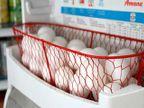 अंडी फ्रिजमध्ये का ठेवू नये, वाचा 4 कारणे...| - Divya Marathi