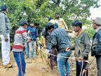 सातशे फूट दरीत कार कोसळली, चौघे सुखरूप; 24 तासांनंतर मदतकार्य कोल्हापूर,Kolhapur - Divya Marathi