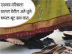 10 उपाय शनीचे : यामुळे दूर होते साडेसाती आणि मिळते नशिबाची साथ|ज्योतिष,Jyotish - Divya Marathi