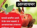 रोज खा 1 सफरचंद, कमी होईल लठ्ठपणा, असेच 10 फायदे...|जीवन मंत्र,Jeevan Mantra - Divya Marathi