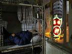 जगातील सर्वात महागड्या शहराची भयावह स्थिती, कोंदट रुममध्ये राहायला लोक विवश|विदेश,International - Divya Marathi