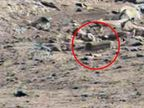 मंगळावर आता एलियन्सचे घर दिसल्याचा दावा, 6 इंचाचा दरवाजाही दिसला|विदेश,International - Divya Marathi