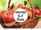 टोमॅटो आणि असेच 14 फूड फ्रिजमध्ये किती दिवस ठेवावेत, जाणून घ्या|जीवन मंत्र,Jeevan Mantra - Divya Marathi