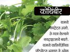 चुकूनही पुन्हा गरम करु नका हे 10 पदार्थ, होऊ शकते हे नुकसान...|जीवन मंत्र,Jeevan Mantra - Divya Marathi