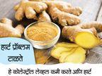 10 फायदे : रोज खा अद्रक, कमी होईल हेयर फॉल...|जीवन मंत्र,Jeevan Mantra - Divya Marathi