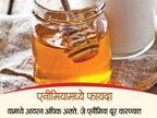 रोज प्यावे एक ग्लास मधाचे दूध, शरीराला होतील हे 10 फायदे...|जीवन मंत्र,Jeevan Mantra - Divya Marathi