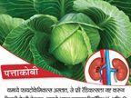 किडनी आजाराचे आहेत १० संकेत, हे १० पदार्थ खाल्ल्याने समस्या होईल दूर... जीवन मंत्र,Jeevan Mantra - Divya Marathi