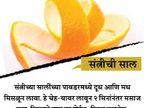 म्हातारपण लवकर येऊ नये असे वाटते ना, करा फक्त 5 मिनिटांचे हे 14 उपाय... जीवन मंत्र,Jeevan Mantra - Divya Marathi