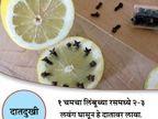 लवंग पाण्यात उकळून घेतल्याने दूर होईल सर्दी-ताप, 10 मोठे फायदे...|जीवन मंत्र,Jeevan Mantra - Divya Marathi