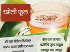 ग्रीन टीचे आहेत हे 9 ऑप्शन, वजन कमी करण्यासाठी करा ट्राय... जीवन मंत्र,Jeevan Mantra - Divya Marathi