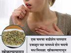 बडीशेप खाल्ल्याने स्मरणशक्ती होईल तल्लख, जाणुन घ्या असेच काही फायदे... जीवन मंत्र,Jeevan Mantra - Divya Marathi