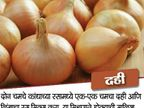कांद्याच्या रसामध्ये या 8 गोष्टी मिसळून केसांना लावा, होतील हे खास फायदे|जीवन मंत्र,Jeevan Mantra - Divya Marathi