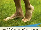 रोज 15 मिनिट चालावे अनवाणी पायाने, मिळतील 10 फायदे...|जीवन मंत्र,Jeevan Mantra - Divya Marathi