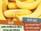 परिक्षेअगोदर मुलांना खाऊ घाला हे 12 पदार्थ, बुध्दी होईल तल्लख...|जीवन मंत्र,Jeevan Mantra - Divya Marathi
