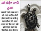 या आहेत फेंगशुईच्या 9 टिप्स, कमी करून शकतात तुमच्या अडचणी ज्योतिष,Jyotish - Divya Marathi