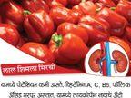 हेल्दी किडनीसाठी अवश्य खावेत हे 10 पदार्थ, निरोगी राहील शरीर वाढेल आयुष्य|जीवन मंत्र,Jeevan Mantra - Divya Marathi