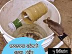 उंदीर न मारता पकडण्याच्या सर्वात Simple टिप्स, घ्या जाणुन...| - Divya Marathi