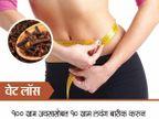 खा फक्त 2 लवंग, दूर होईल गॅस प्रॉब्लम, वाचा इतरही 10 फायदे... जीवन मंत्र,Jeevan Mantra - Divya Marathi
