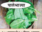 या 3 गोष्टींच्या कमतरतेने केसांना पोहोचू शकते नुकसान, हे आहेत याचे सोर्स जीवन मंत्र,Jeevan Mantra - Divya Marathi