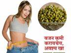 नियमित सेवन करावी एक वाटी मुगडाळ, वजन होईल झटपट कमी...|जीवन मंत्र,Jeevan Mantra - Divya Marathi