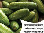 हा पदार्थ खाल्ल्याने दूर होईल किडनी स्टोन, असेच 10 फायदे...|जीवन मंत्र,Jeevan Mantra - Divya Marathi