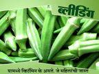 भेंडी खाल्ल्याने होणार नाही कँसर, हे आहे याचे 10 फायदे...|जीवन मंत्र,Jeevan Mantra - Divya Marathi