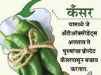 हिरव्या मिर्चीने होईल वेट लॉस, जाणुन घ्या असेच 12 फायदे...|जीवन मंत्र,Jeevan Mantra - Divya Marathi
