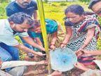 अस्थींची राख वृक्षारोपणासाठी वापरत आजोबांना अनोखी श्रद्धांजली; पर्यावरण संरक्षणाचा संदेश औरंगाबाद,Aurangabad - Divya Marathi