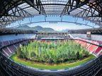 ऑस्ट्रियामधील 49 वर्षे जुन्या फुटबॉल स्टेडिअममध्ये लावले 300 झाड, वर्षाला देतील 35380 किलोग्राम ऑक्सिजन  - Divya Marathi