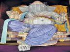 २५ लाखांच्या नोटांचे बाप्पा|अकोला,Akola - Divya Marathi