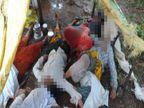 जळगाव जिल्ह्यात अंगावर वीज कोसळ्याने 5 जणांचा मृत्यू,  एकाच कुटुंबातील चौघांचा समावेश जळगाव,Jalgaon - Divya Marathi