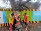 आरे कॉलनीतील वृक्षतोडीवर बंदी घालण्यास हायकोर्टाचा नकार मुंबई,Mumbai - Divya Marathi