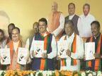 भाजपचा जाहीरनामा घोषित; दुष्काळमुक्त महाराष्ट्राच्या संकल्पासह बरंच काही...| - Divya Marathi