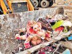 મૂર્તિઓ JCBથી તોડી ડમ્પરમાં ભરાતી, ઢગલામાંથી અમારા શ્રીજીને શોધીને લઈ આવ્યા અને મહોલ્લામાં જ વિસર્જન કર્યું  - Divya Bhaskar