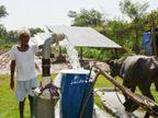આણંદના 11 ખેડૂતો સૂર્યશકિતથી સિંચાઇના પર્યાવરણ રક્ષક માર્ગે વળ્યા|આણંદ,Anand - Divya Bhaskar