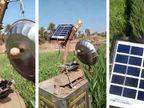 ગુજરાતી ખેડૂતનો જુગાડ, પક્ષીઓને ભગાડવા સૌરઊર્જાથી ચાલતું યંત્ર બનાવ્યું  - Divya Bhaskar