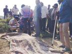 માનવભક્ષી સિંહ/ ભાવનગરના મહુવામાં સિંહે માછીમાર પર હુમલો કરીને ફાડી ખાદ્યો|ભાવનગર,Bhavnagar - Divya Bhaskar