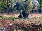 મતદાનના 2 દિવસ પહેલા દંતેવાડામાં નક્સલી હુમલો, આઈડી બ્લાસ્ટમાં ભાજપ ધારાસભ્યનું મોત, 5 જવાન શહીદ|ઈન્ડિયા,National - Divya Bhaskar