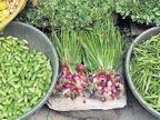 પાણીના ભાવે વેચાતી ડુંગળી મોંઘી બની, સિઝનમાં પહેલીવાર માર્કેટિંગ યાર્ડમાં રૂ. 20ની કિલોએ વેચાઈ  - Divya Bhaskar