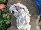 ગુગલીયાપુરા ગામના તળાવ પાસેથી ત્યજી દેવાયલી નવજાત બાળકી મળી| - Divya Bhaskar