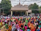 વાઘજીપુર અને મોરડુંગરા સ્વામિનારાયણ મંદિરમાં અન્નકૂટોત્સવ ઉજવાયો, મોટી સંખ્યામાં હરિભક્તો ઉમટ્યાં| - Divya Bhaskar