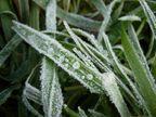 હાડ થીજવતી ઠંડીથી ઉત્તર ગુજરાત ઠુંઠવાયું, પવન અને ભેજનું  પ્રમાણ વધતાં ઠંડી વધી|મહેસાણા,Mehsana - Divya Bhaskar