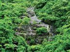 ગીરનાર પર્વત પરથી નીચે આવતા ઝરણાનો અદભુત નજારો જુનાગઢ,Junagadh - Divya Bhaskar